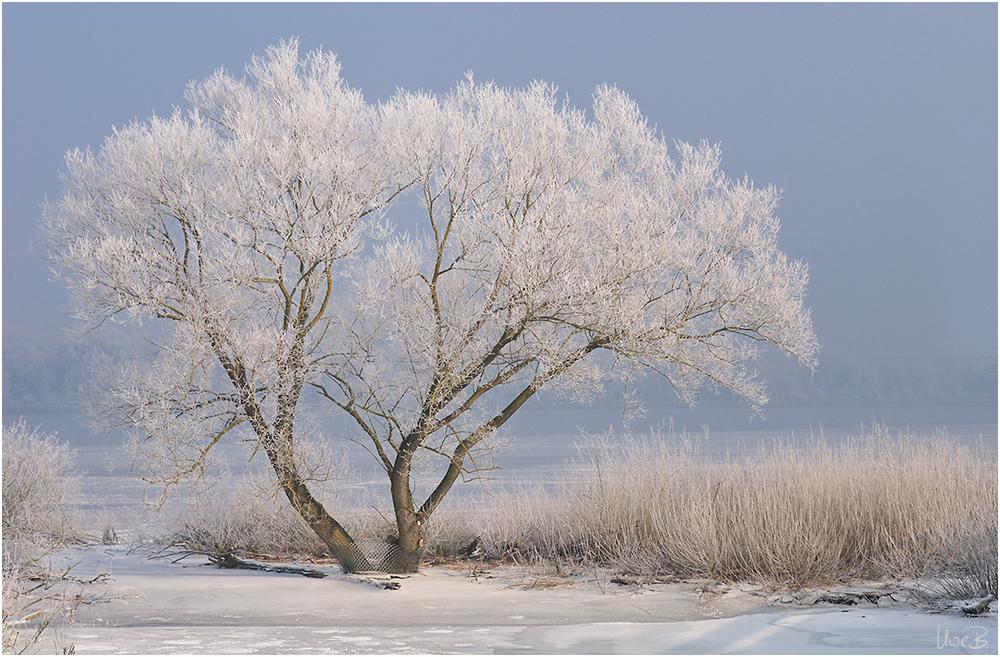 Boarisch colored nature