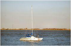 Boat on river Tejo