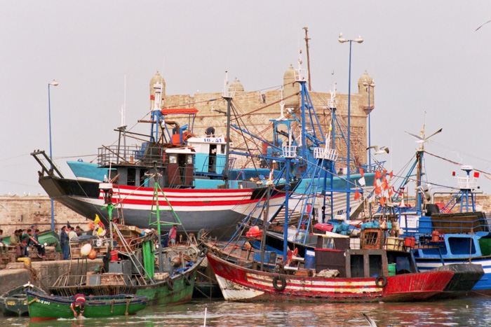 boats 8