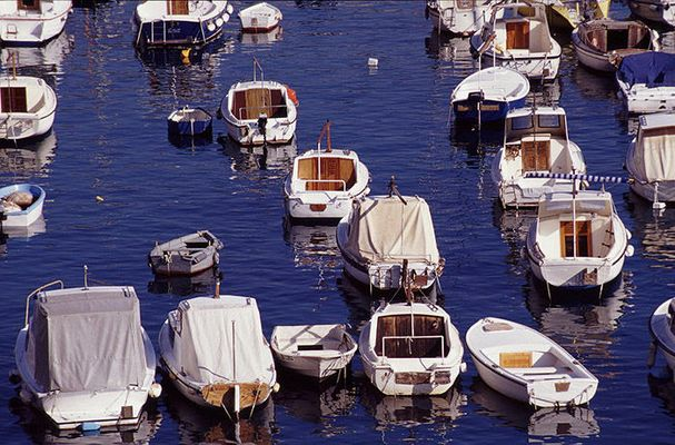 Boats in the Harbour.
