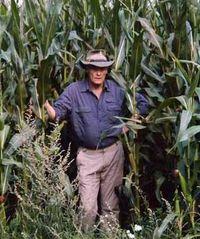 Bob Greaves