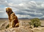 Bobby @ City of Rocks, New Mexico