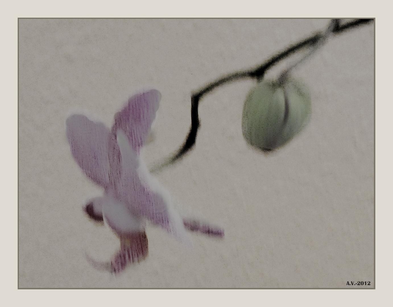 Boceto de primavera