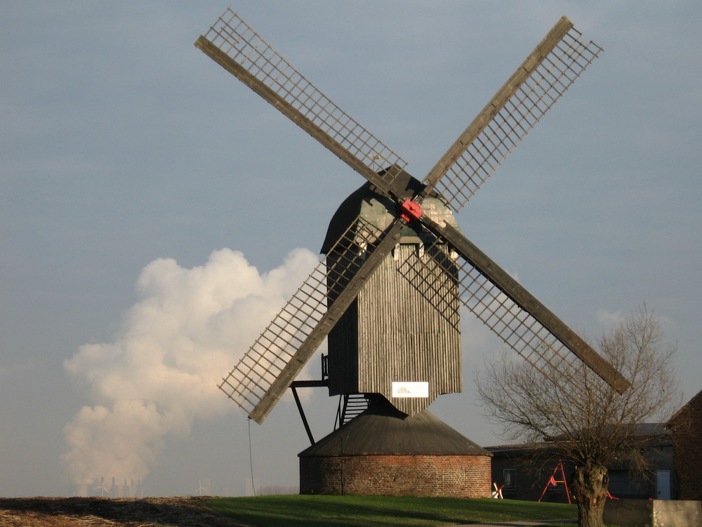 Bockwindmühle bei Titz