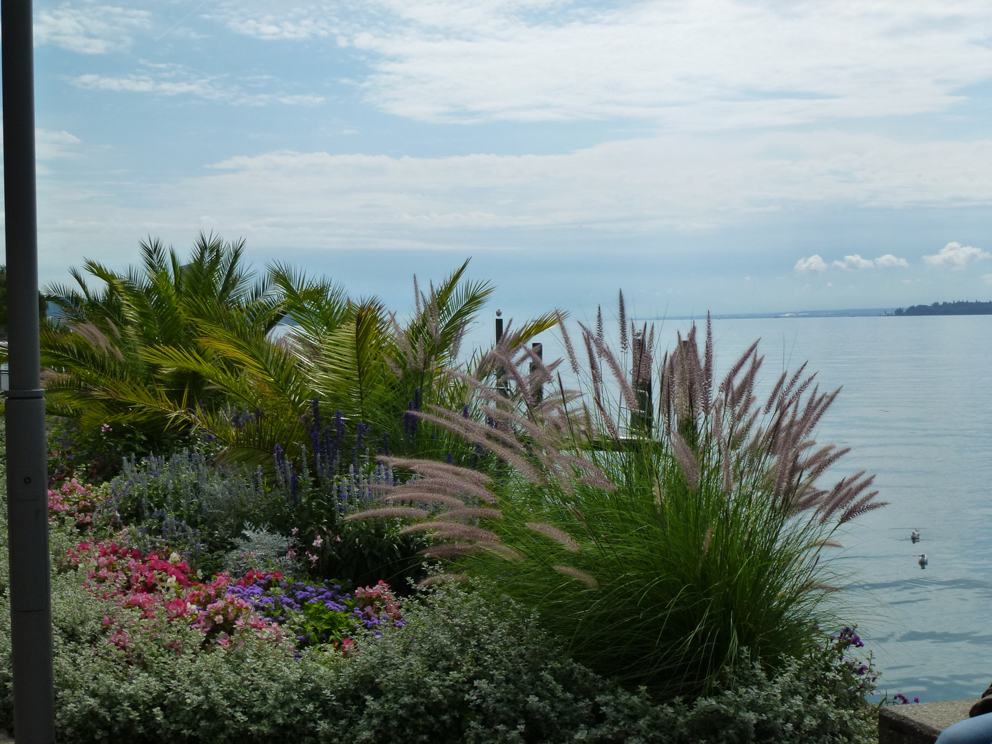 Bodensee 2012