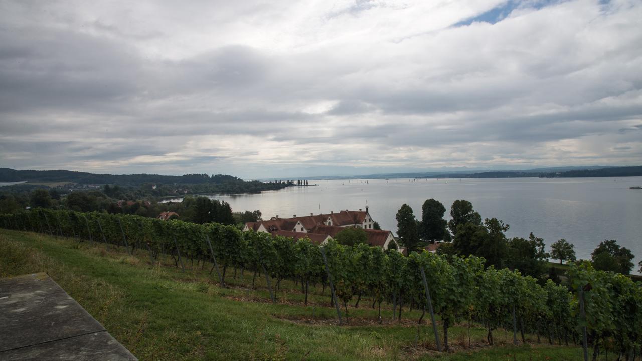 Bodensee bei Uhldingen