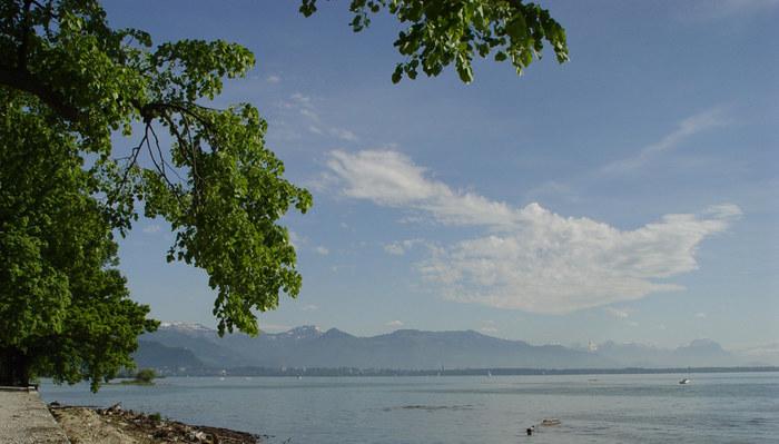 Bodensee, Blick auf Bregenz