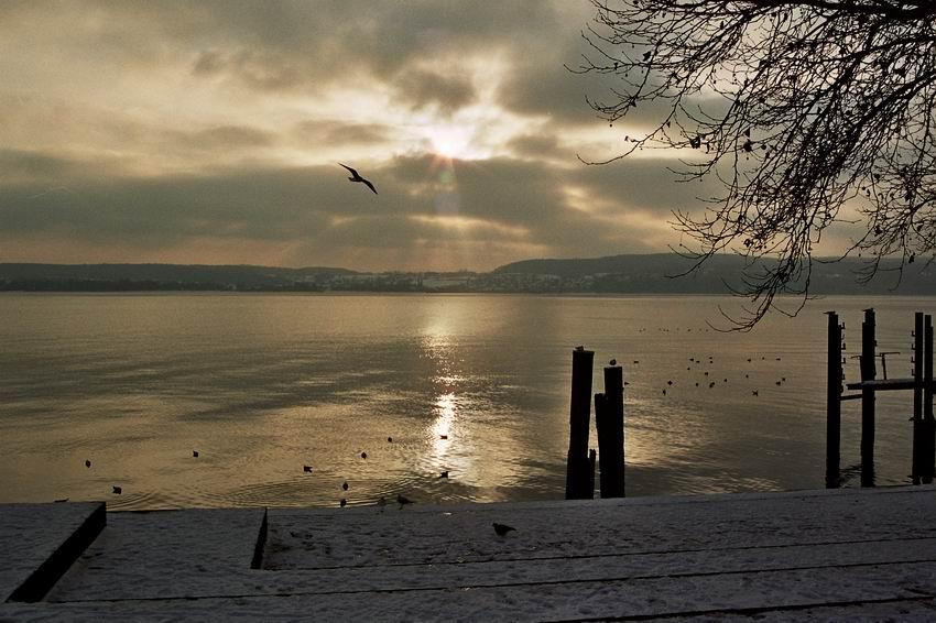 Bodensee I