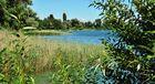 Bodensee im August