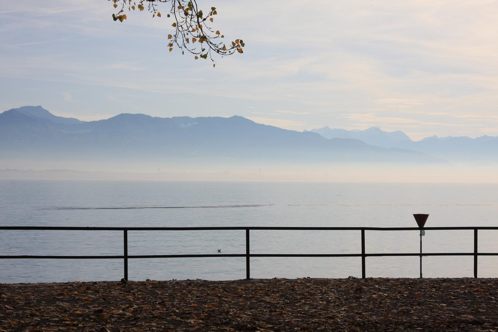 Bodensee im Nebel