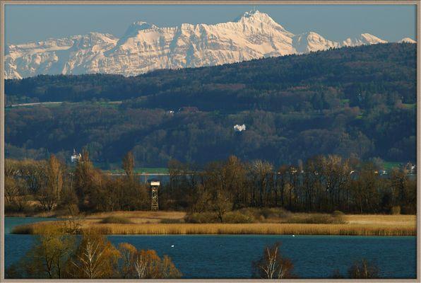 Bodensee, Insel Mettnau (bei Radolfzell), Alpen (Säntis-Massiv), April 2015