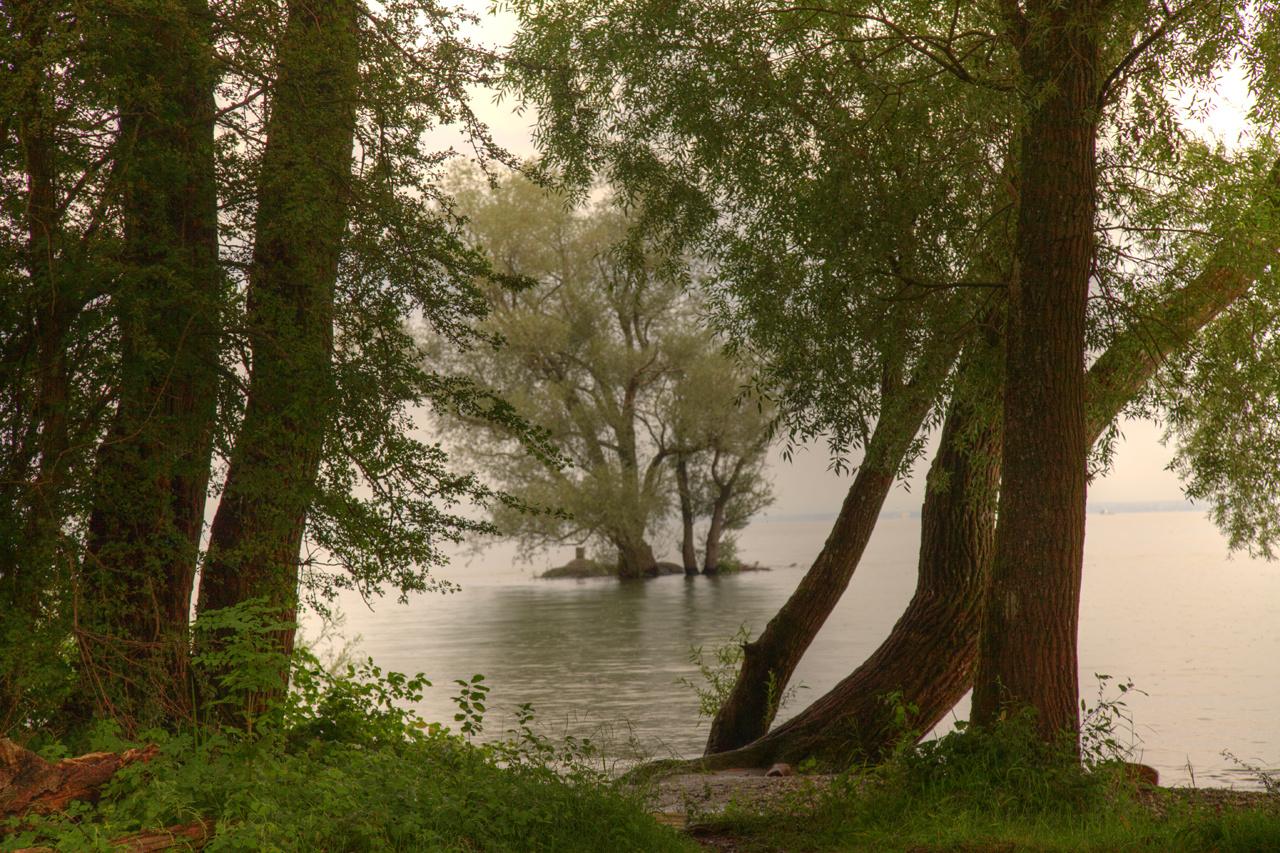 Bodensee Stimmungsbild