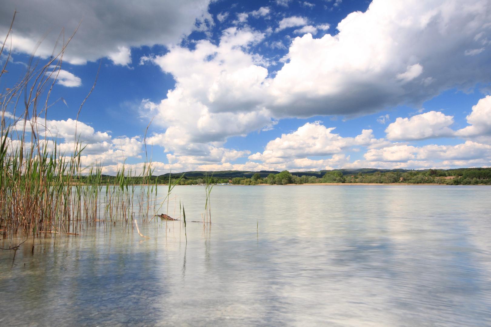 Bodensee Ufer