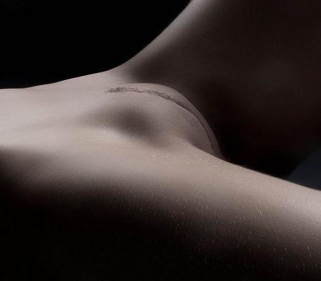 bodypart