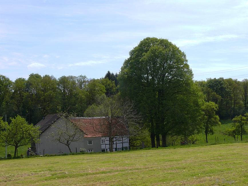 Böhlefeld (Remscheid-Lennep)