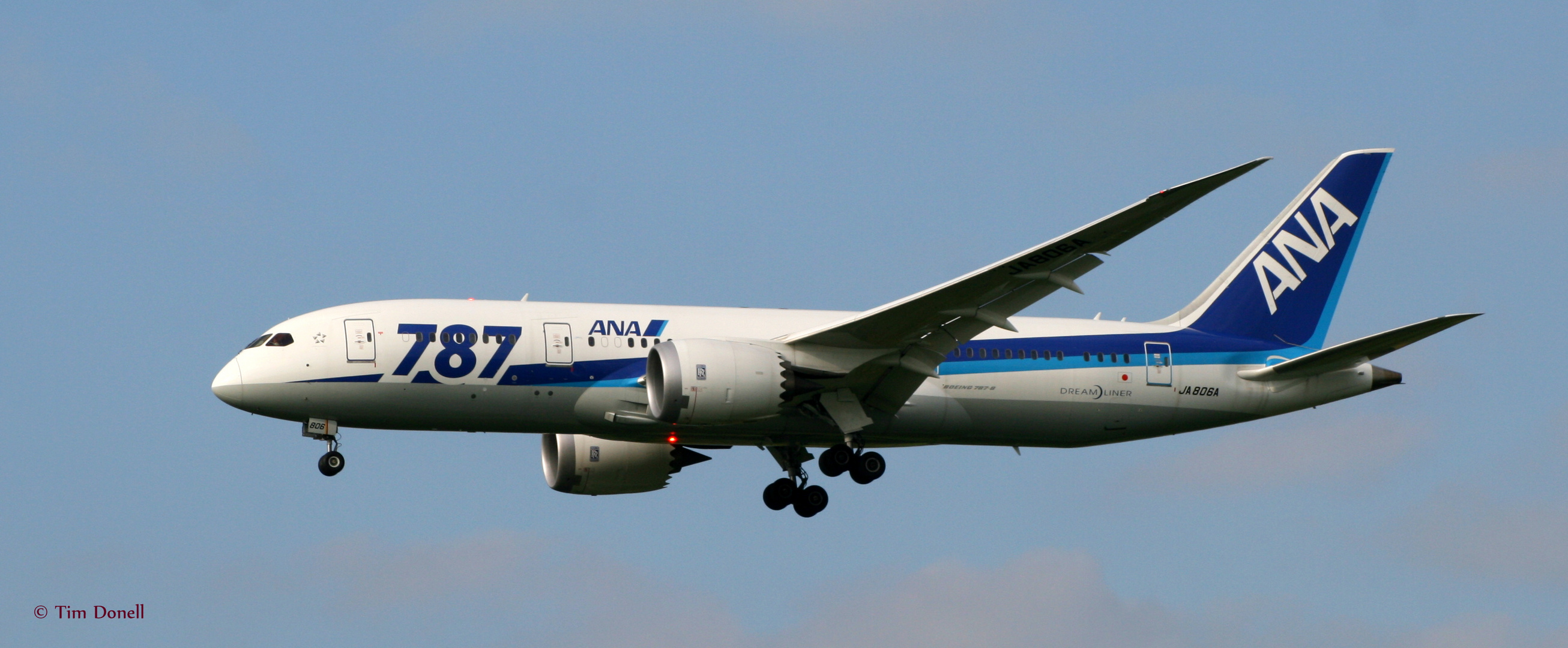 Boeing 787-8 (JA806A) All Nippon Airways