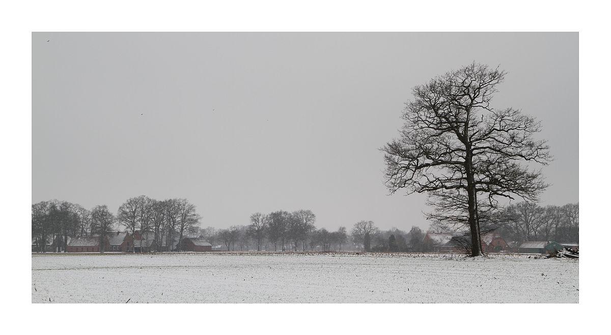 Bösel im Winter 2