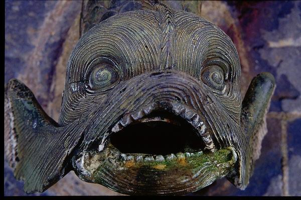 böser Fisch