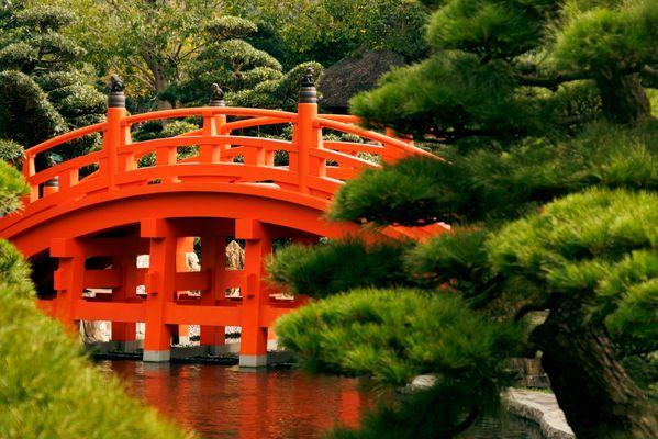 Chinesische Brücke Fotos & Bilder auf fotocommunity