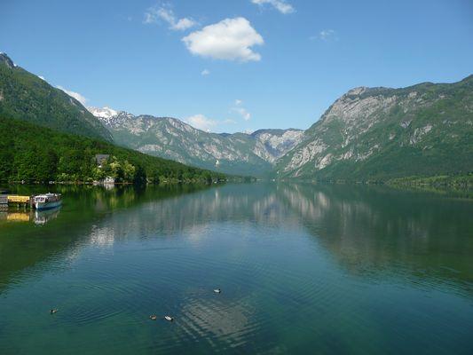 Bohinjsko See - Slowenien