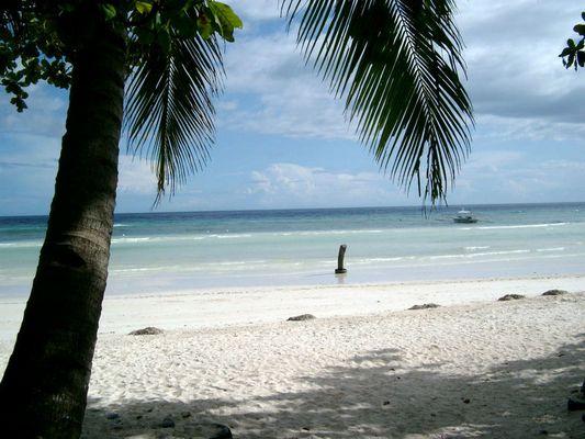 Bohol Beach Club, Philippinen