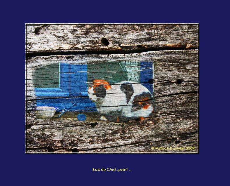 Bois de Chat peint...