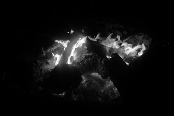 Bois de feu