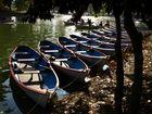 Bois de Vincennes. Lac Daumesnil