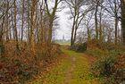 bois et campagne de l'Oise