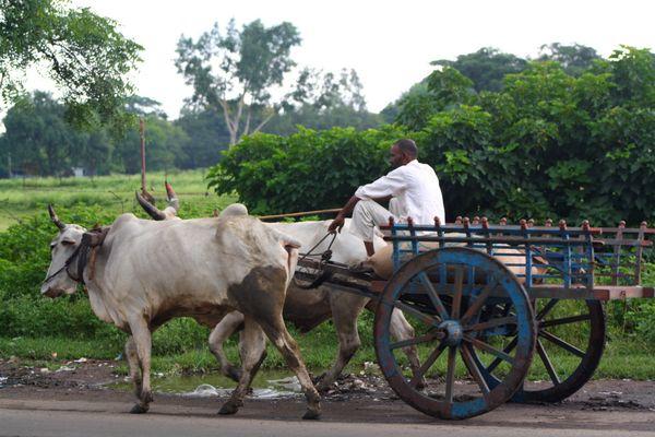 Bolide Indien