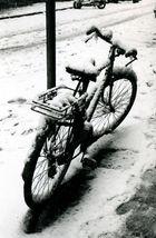 Bologna: Bicicletta senza studente sotto la neve