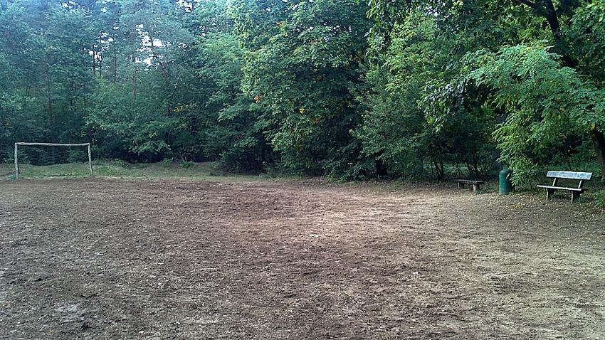 Bolzplatz im Walde 2