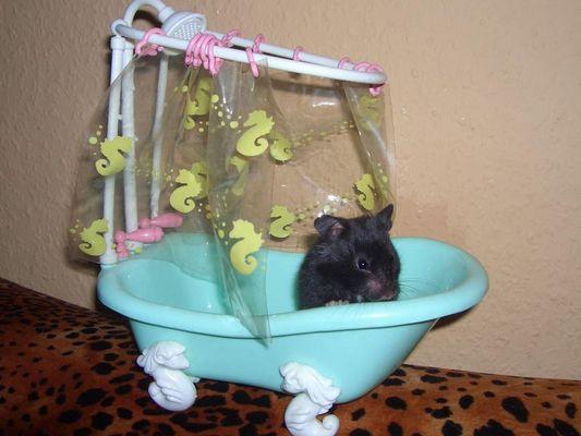 Bommel nimmt ein Bad