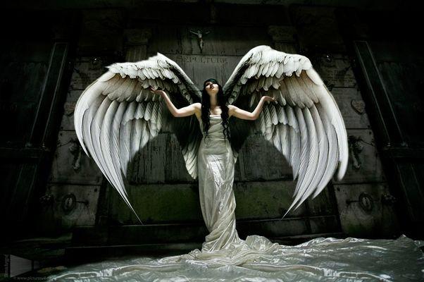 bommiS angelS