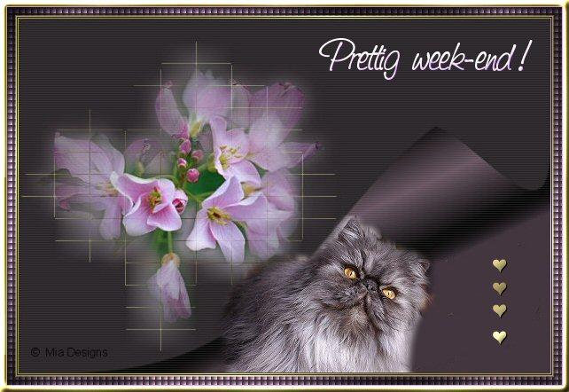Bon week-end (Prettig week-end)