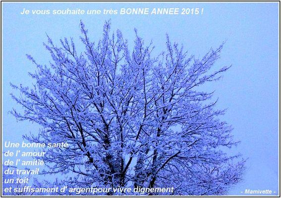 BONNE ANNÉE 2015 du Cotentin