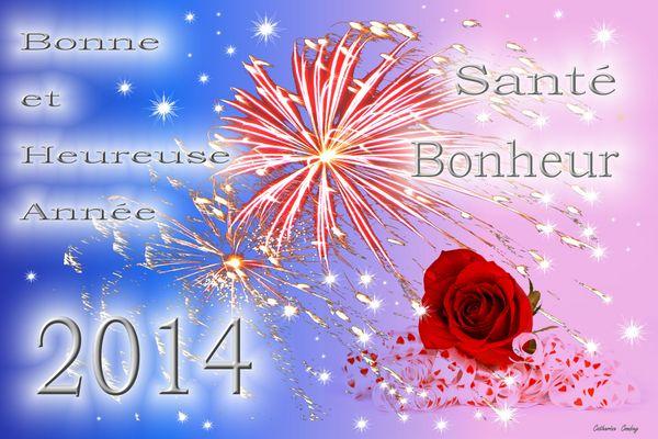 Bonne Année 2014 !!!!!!!!!