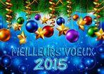 BONNE ANNEE 2015 à TOUS