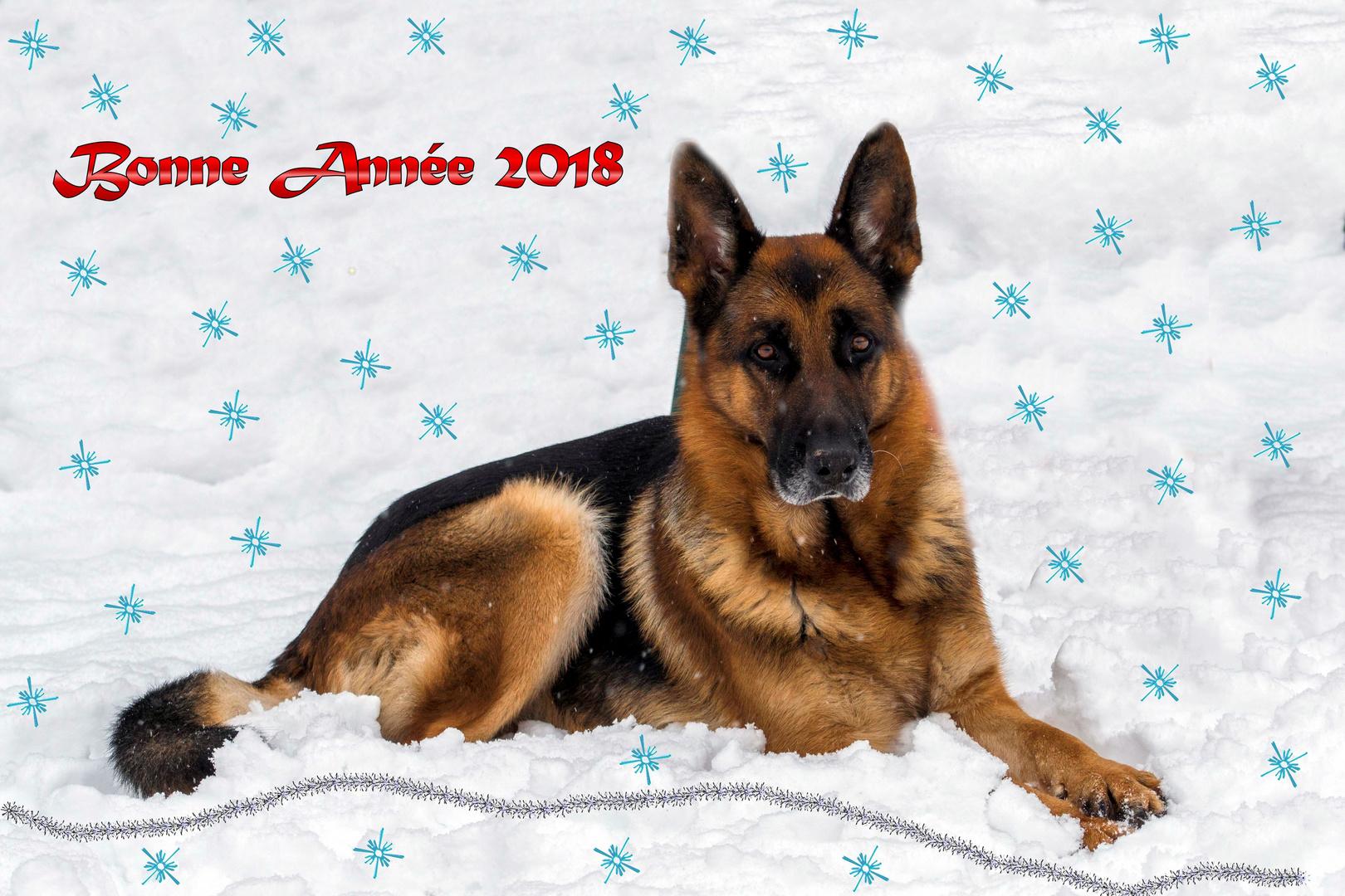 Bonne année 2018 que tous vos rêves ce réalises.