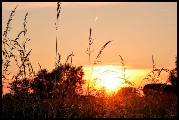bonne nuit le soleil ^^