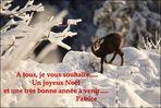 Bonnes fêtes à tous........