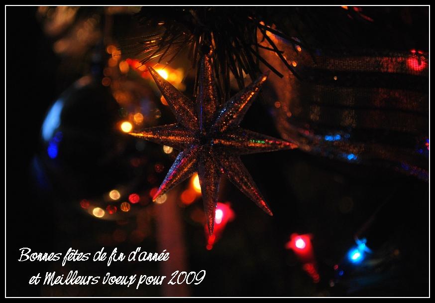 Bonnes fêtes et meilleurs voeux