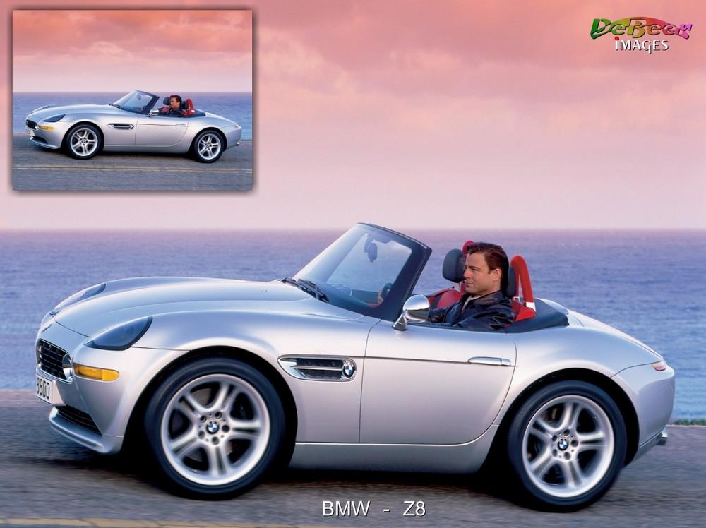 Bonsai BMW Z8