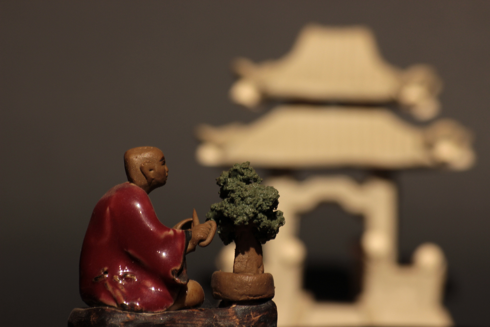 Bonsaipflege