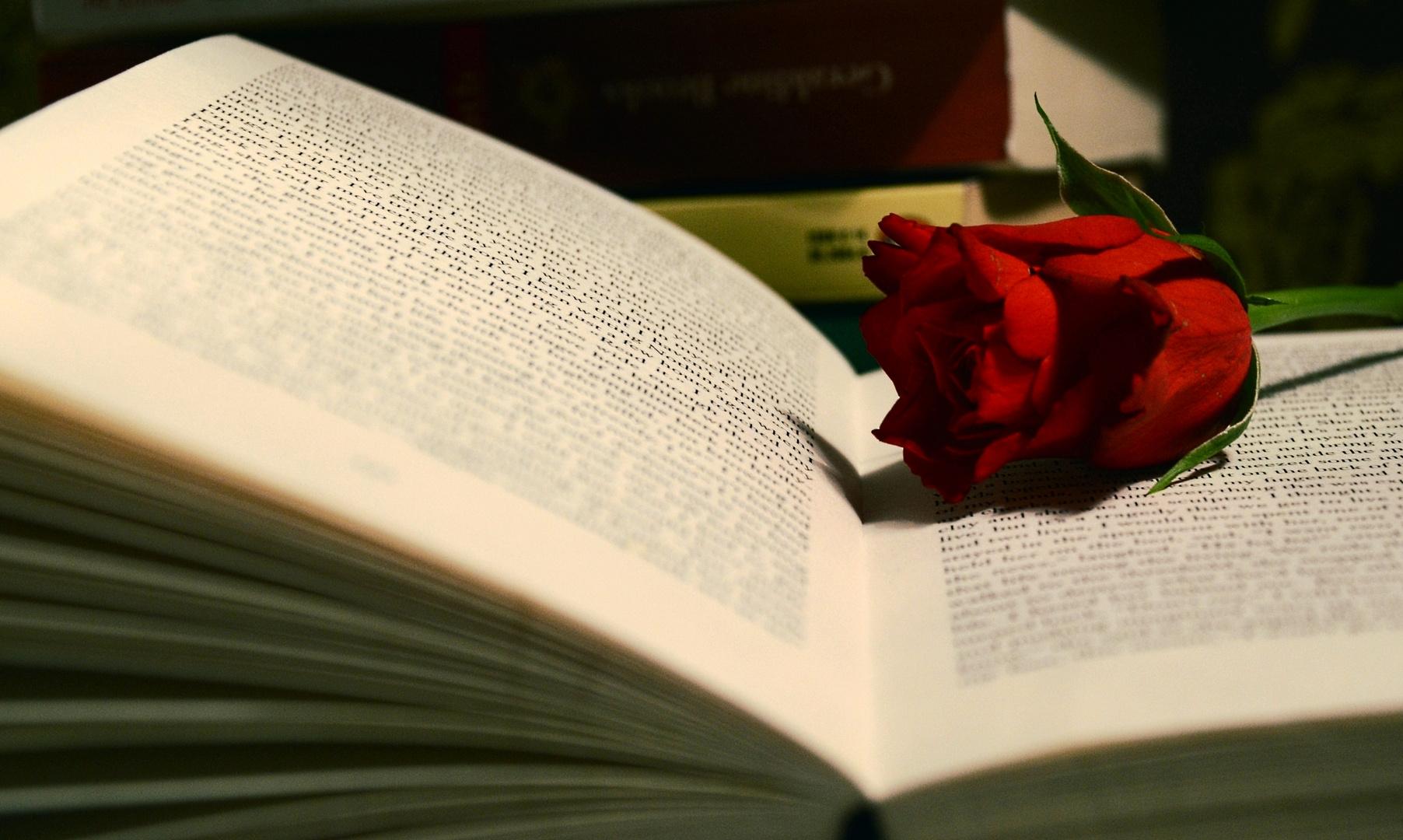 books&roses
