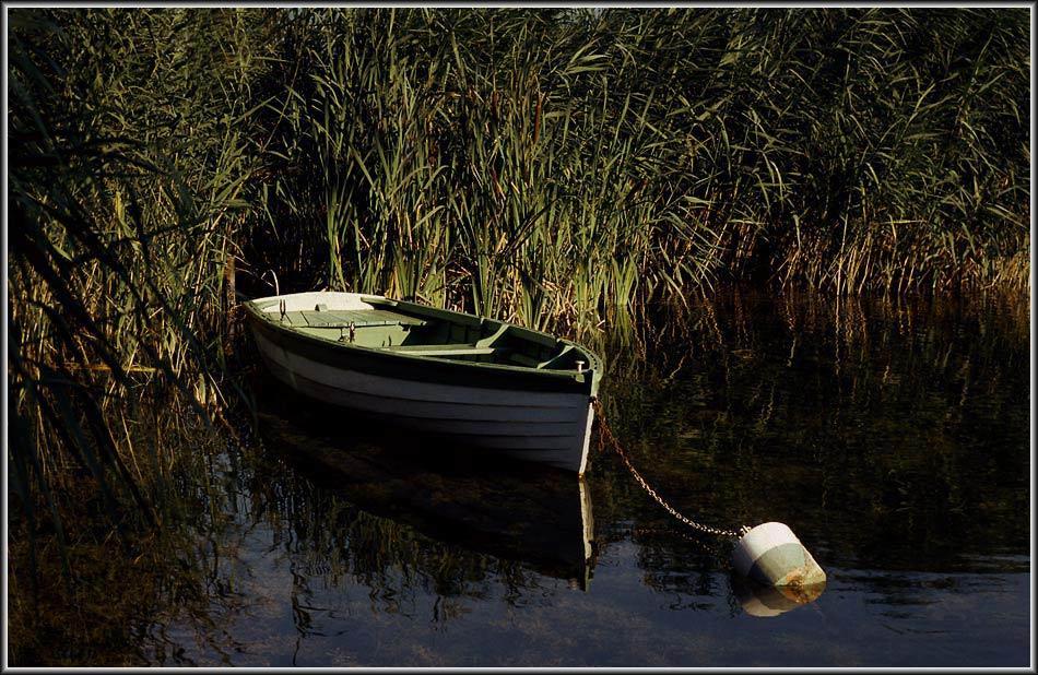 Boot am Balaton 2