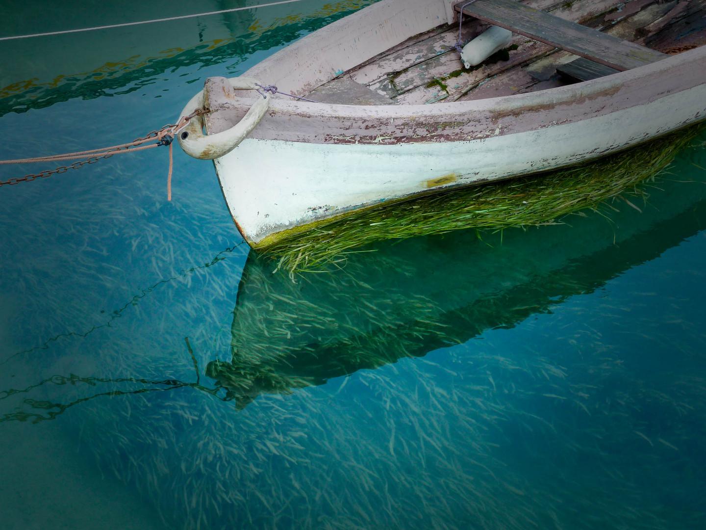 Boot im Gardasee