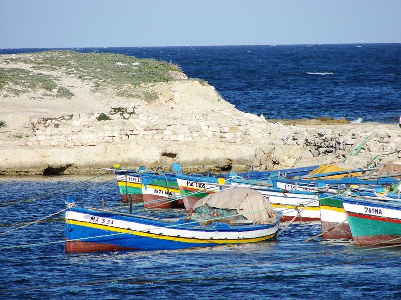 Boote am punischen Hafenbecken