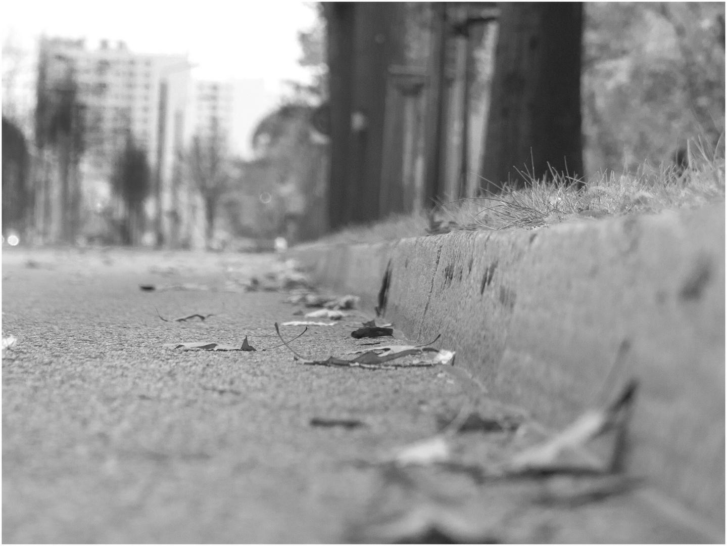 Bordstein mit Straße