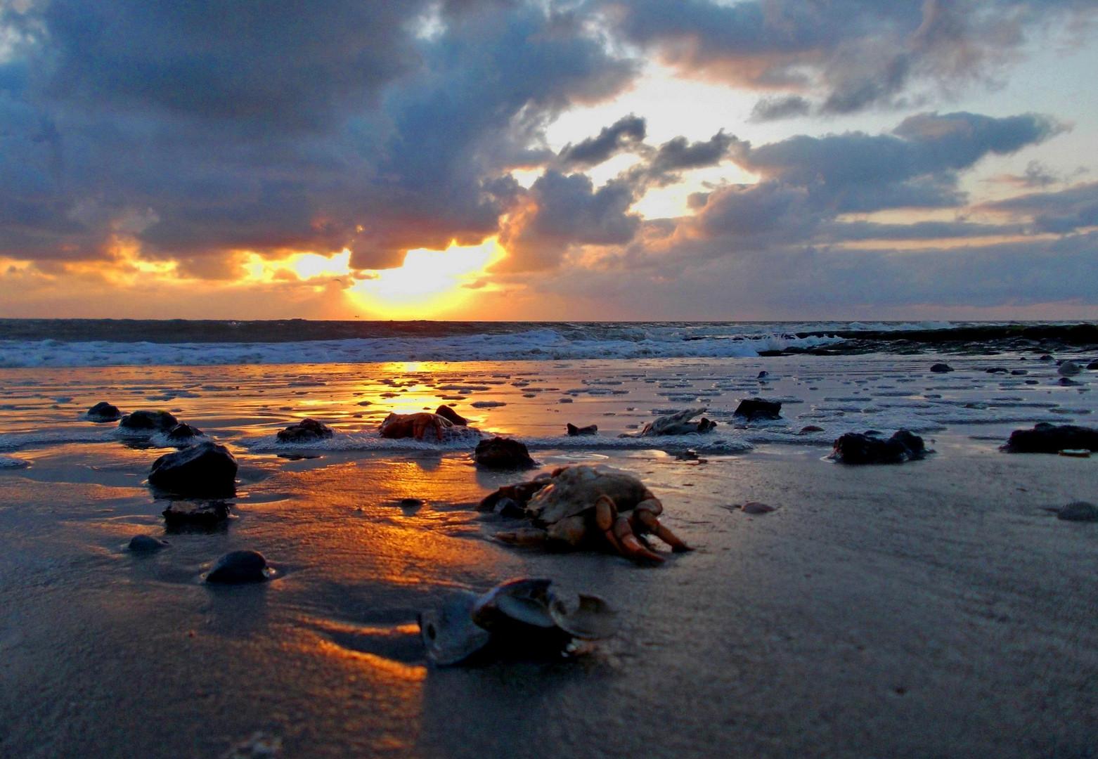 Borkum - Sonnenuntergang am Nordstrand